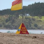 Photo of red and yellow SLS flag on beach